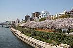 Sumida Park 2011.JPG
