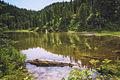Summit Lake Trail 1177 — 013 (Twin Lake).jpg
