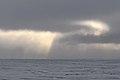 Swirling Sky (4371009216).jpg