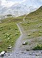 Switzerland - trail 6.jpg