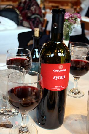 A glass of Italian Syrah wine from Sicily