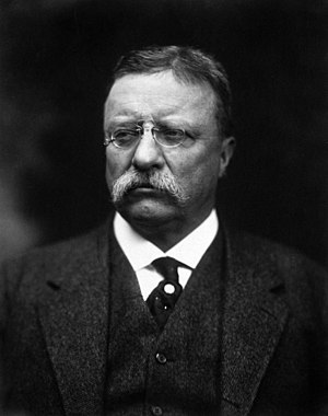 United States presidential election in New York, 1912 - Image: T Roosevelt