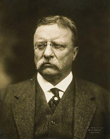 Теодор Рузвельт, 1915