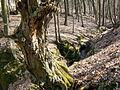 Tachovsky vodopad 06.jpg