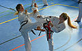 Taekwon-Do Landesmeisterschaft Uetersen 2014 03.jpg