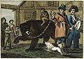 Tanzbär 1810.jpg
