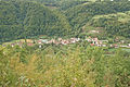 Tara national park serbia 2 - michael tyler.jpg