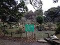 Terrapin pond of Kashii Shrine.jpg