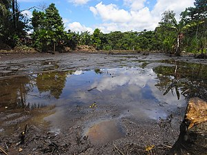 Environmental racism - Aftermath of Lago Agrio oil field