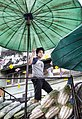 Thailand (4415604101).jpg