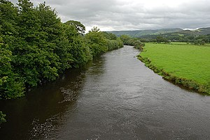 The Afon Dyfi, near Cemmaes Road - Glantwymyn - geograph.org.uk - 918224.jpg