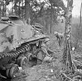 The British Army in North-west Europe 1944-45 B15052.jpg