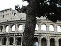 The Coliseum, Rome (9094852773).jpg