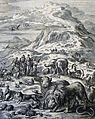 The Phillip Medhurst Picture Torah 62. Coming out of the Ark. Genesis cap 8 vv 18-19. Jan Luyken.jpg