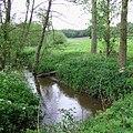 The River Worfe near Ryton, Shropshire - geograph.org.uk - 436306.jpg