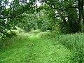 The Roman Road near Crackenthorpe - geograph.org.uk - 925646.jpg