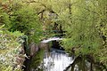 The Water of Leith at Warriston - geograph.org.uk - 1259607.jpg