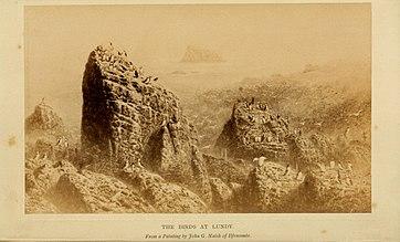 File:The birds of Devon (1892) (14771277783).jpg