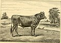 The breeds of live stock, and the principles of heredity (1887) (14758431936).jpg