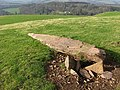 The standing stone on Bemersyde Hill - geograph.org.uk - 686045.jpg