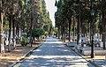 Thessaloniki Cemetery 15.jpg