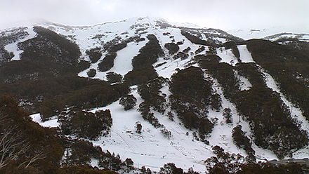 Thredbo, NSW, has the largest vertical drop of any Australian ski resort at 672 m. Thredbo July 2011.jpg