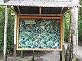 Tikal, Guatemala Laslovarga01.JPG