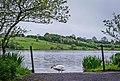 Town lake bailieborough.jpg