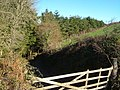 Track into Butland Wood - geograph.org.uk - 273333.jpg