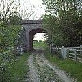 Track leads under disused railway - geograph.org.uk - 440853.jpg