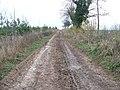 Track towards Naunton - geograph.org.uk - 1596277.jpg