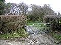 Trackway at Morfydd - geograph.org.uk - 364957.jpg
