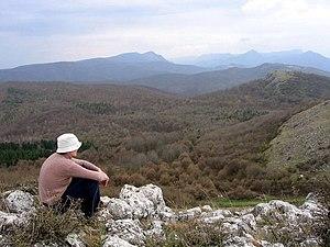 Trascău Mountains - Trascău view