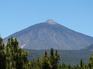 Trees & El Teide.JPG