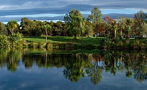 Trees and a pond, The Groynes, Christchurch, New Zealand.jpg