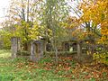 Trees growing inside the ruins of a stable or shed - panoramio.jpg