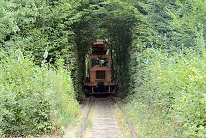Tunnel of Love (railway) - Image: Tunnel of love 03