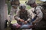 U.S. Pacific Command Amphibious Leadership Symposium (PALS) Hawaii 2015 150519-M-QH615-084.jpg