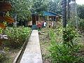 Um tipo de Casas indígena.JPG