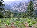 Umatilla-Potamus Canyon (25115895679).jpg
