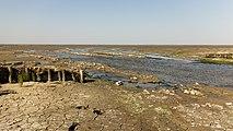 Uniek door eb en vloed steeds wisselend kweldergebied. Locatie, Noarderleech Provincie Friesland 015.jpg