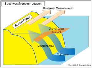 Somali Current - Upwelling current at the Somali coast during Southwest Monsoon