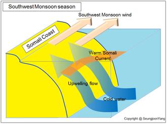 Somali Current - Upwelling current at the Somali coast during Southwest Monsoon