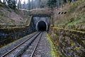 Východní portál Polubenského tunelu.jpg