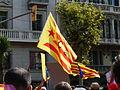 V catalana P1250501.jpg