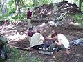 Varnhem innan munkarna kom, den 13 juni 2007, bild 30.jpg