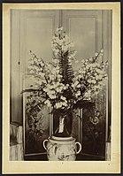 Vase (fleur) - J-A Brutails - Université Bordeaux Montaigne - 0823.jpg