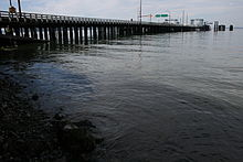 Water is meeting the shore in the foreground of the picture while a pylon based bridge is in the far left corner, which is the ferry dock