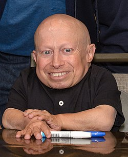 Verne Troyer Chiller Theatre Expo 2017-10-28.jpg