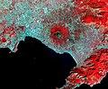 Vesuvius Aster.jpg